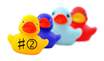 put your business ducks in a row